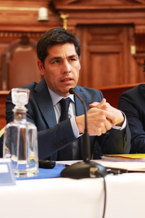 Sr. Ricardo Núñez Videla