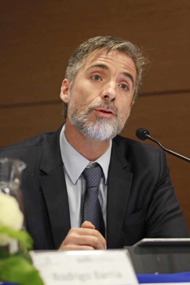 Prof. Iñigo De La Maza